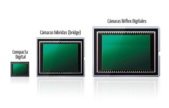 Comparación entre tamaños de Sensores