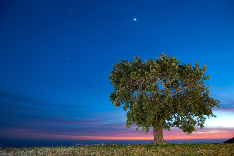 Fotografia Nocturna, Fotografía de Maurid80 - Creative Commons