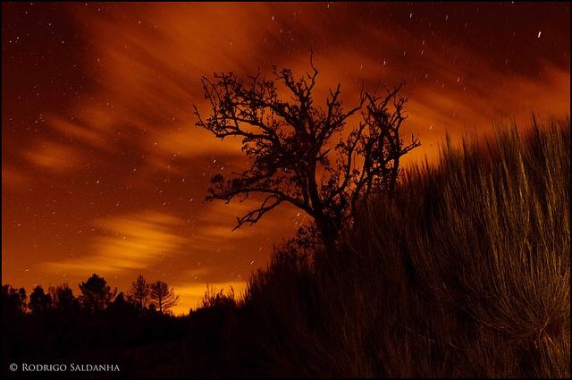 Fotografia nocturna de Rodrigo Saldanha de Almeida creative commons