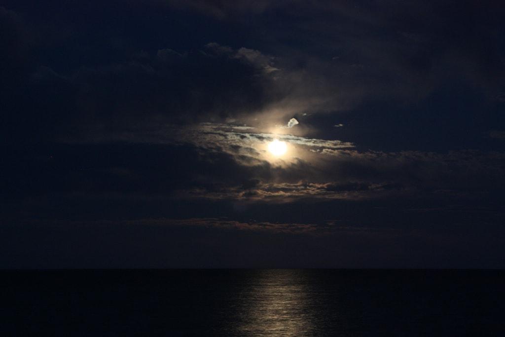 cielo de noche con luna