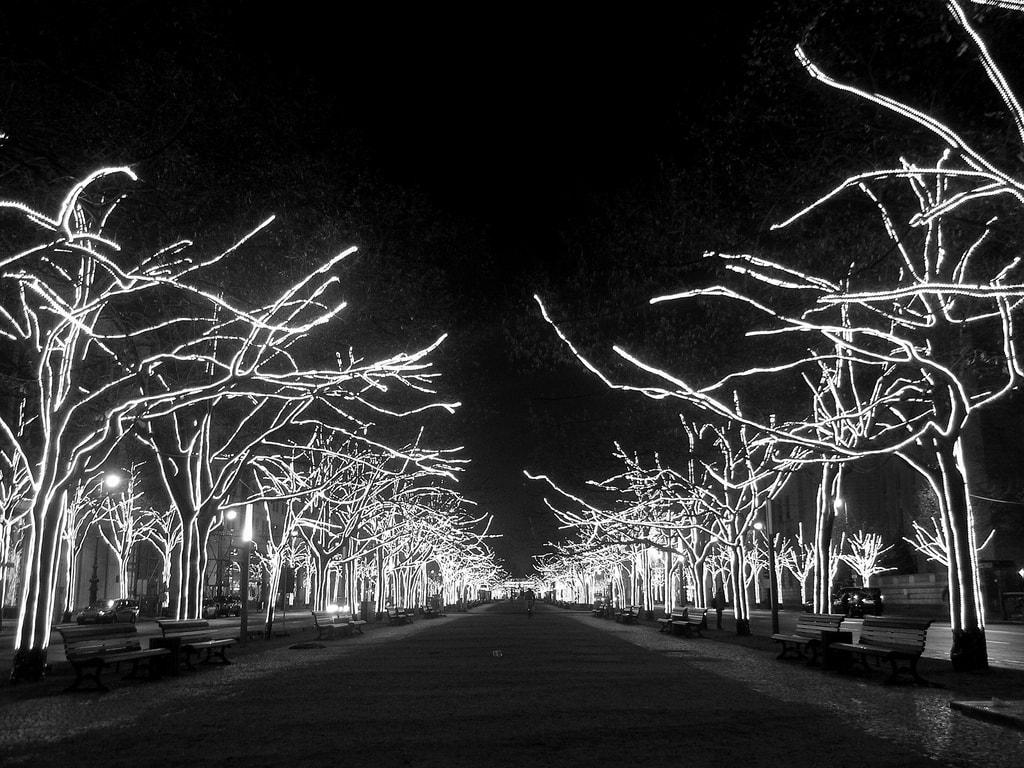 Navidad en Blanco y Negro
