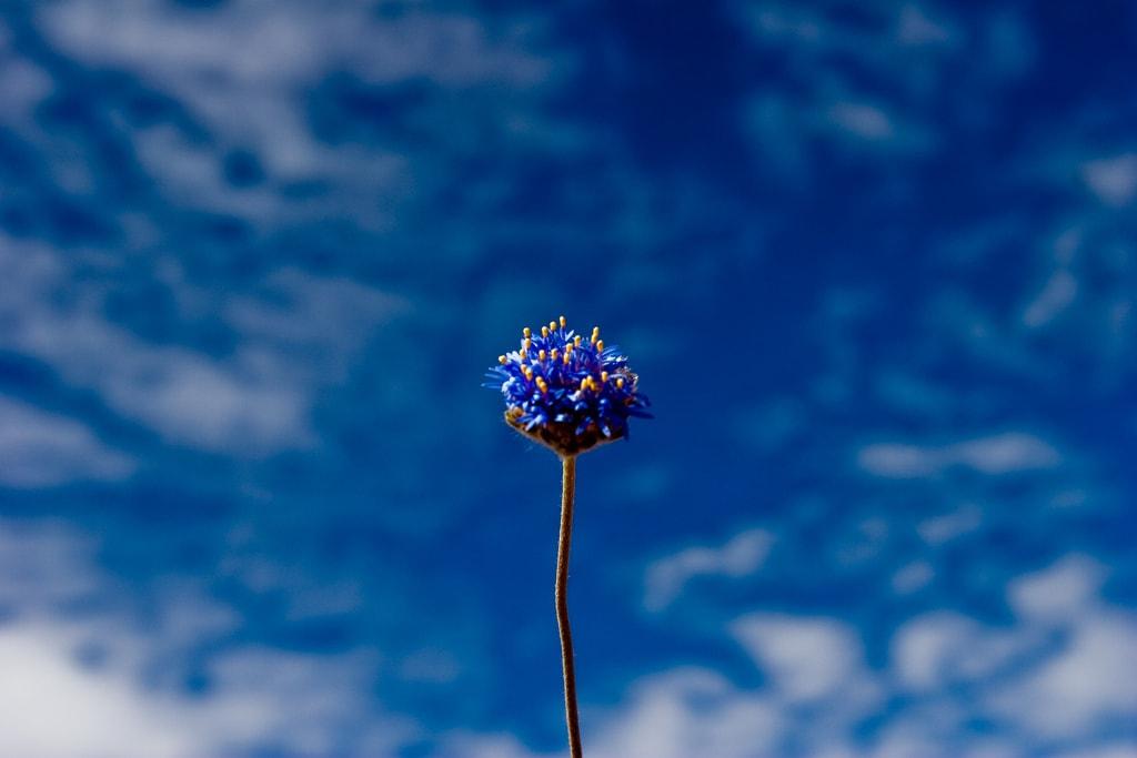 Un cielo con nubes aportará mayor interés a tu fotografía