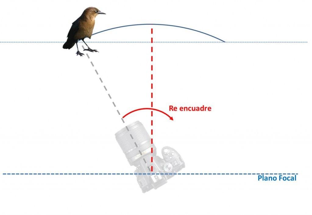 Gráfico de error de paralaje en reencuadre