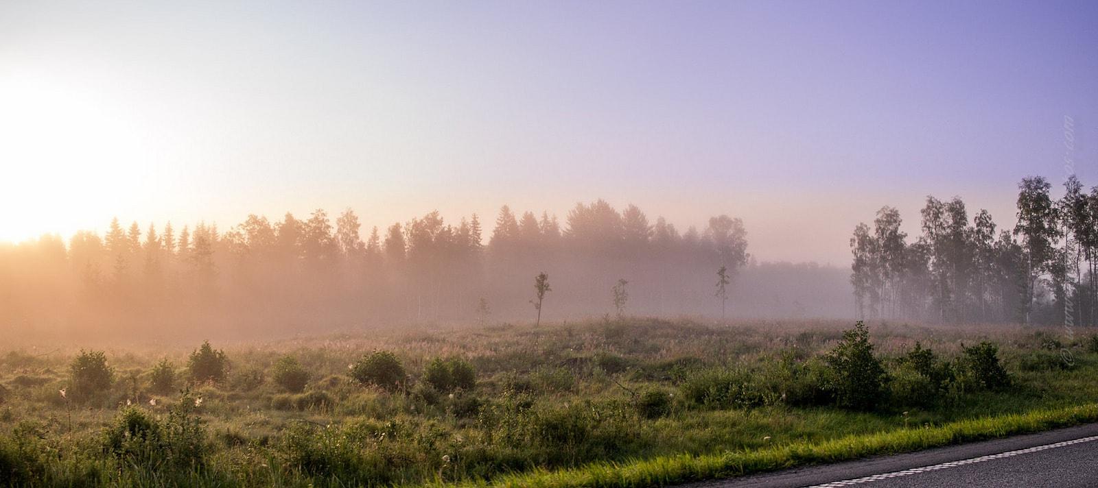 Fotografía Ejemplo de la Nikon D3300