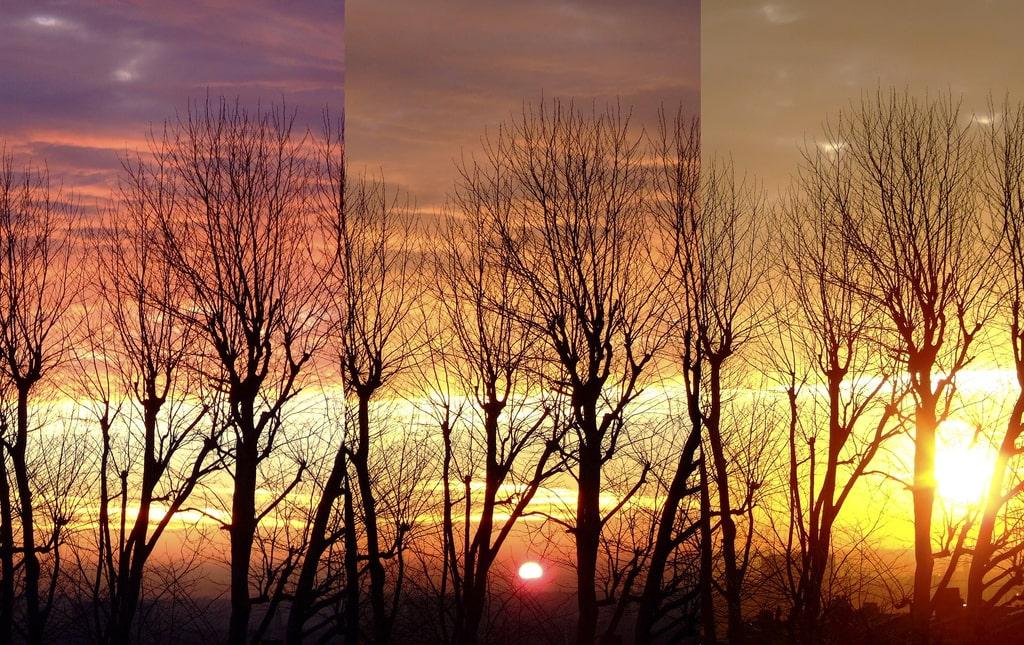 Cambios de luz en el trascurso del día