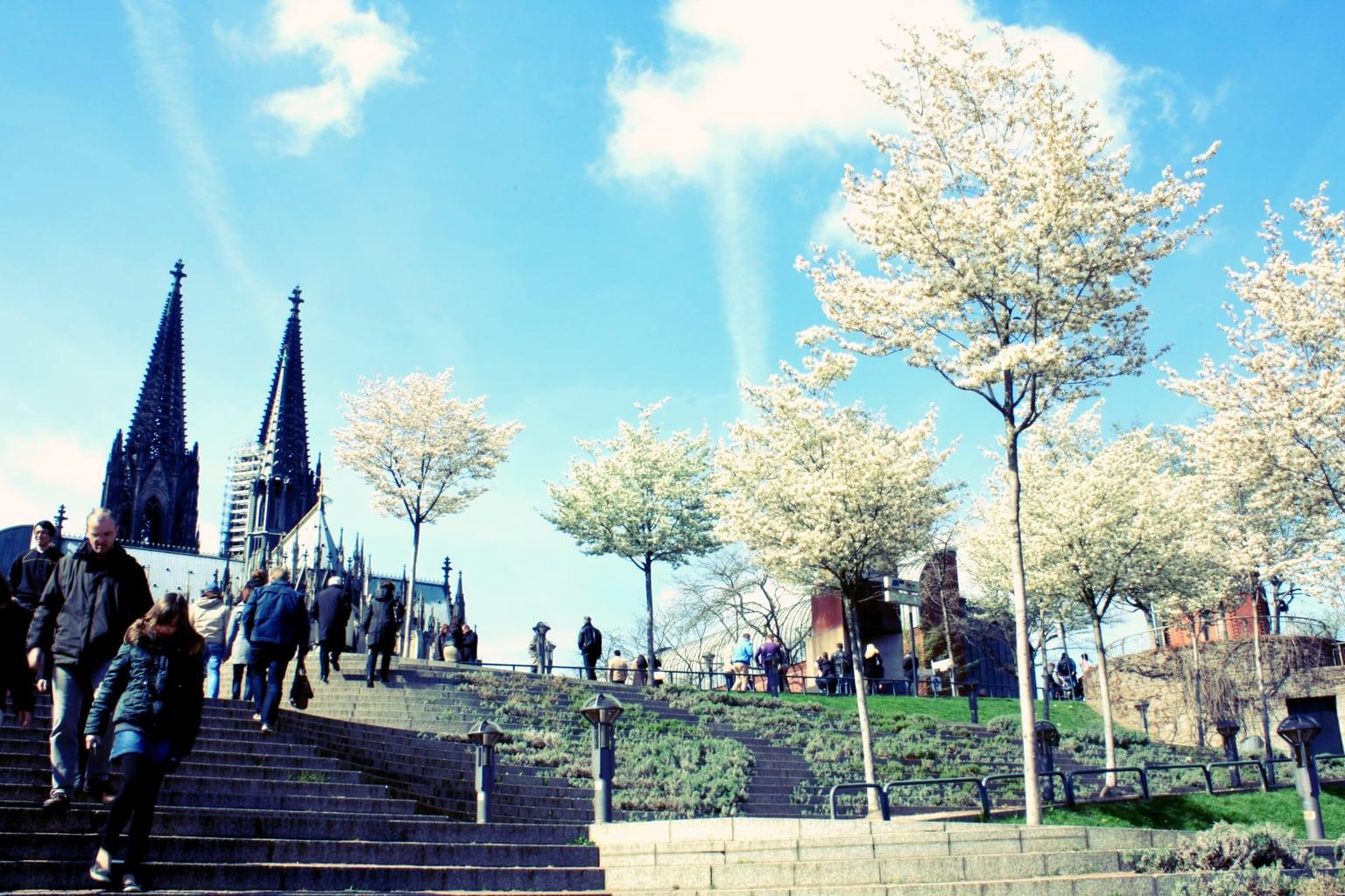 La primavera también llega a las ciudades.