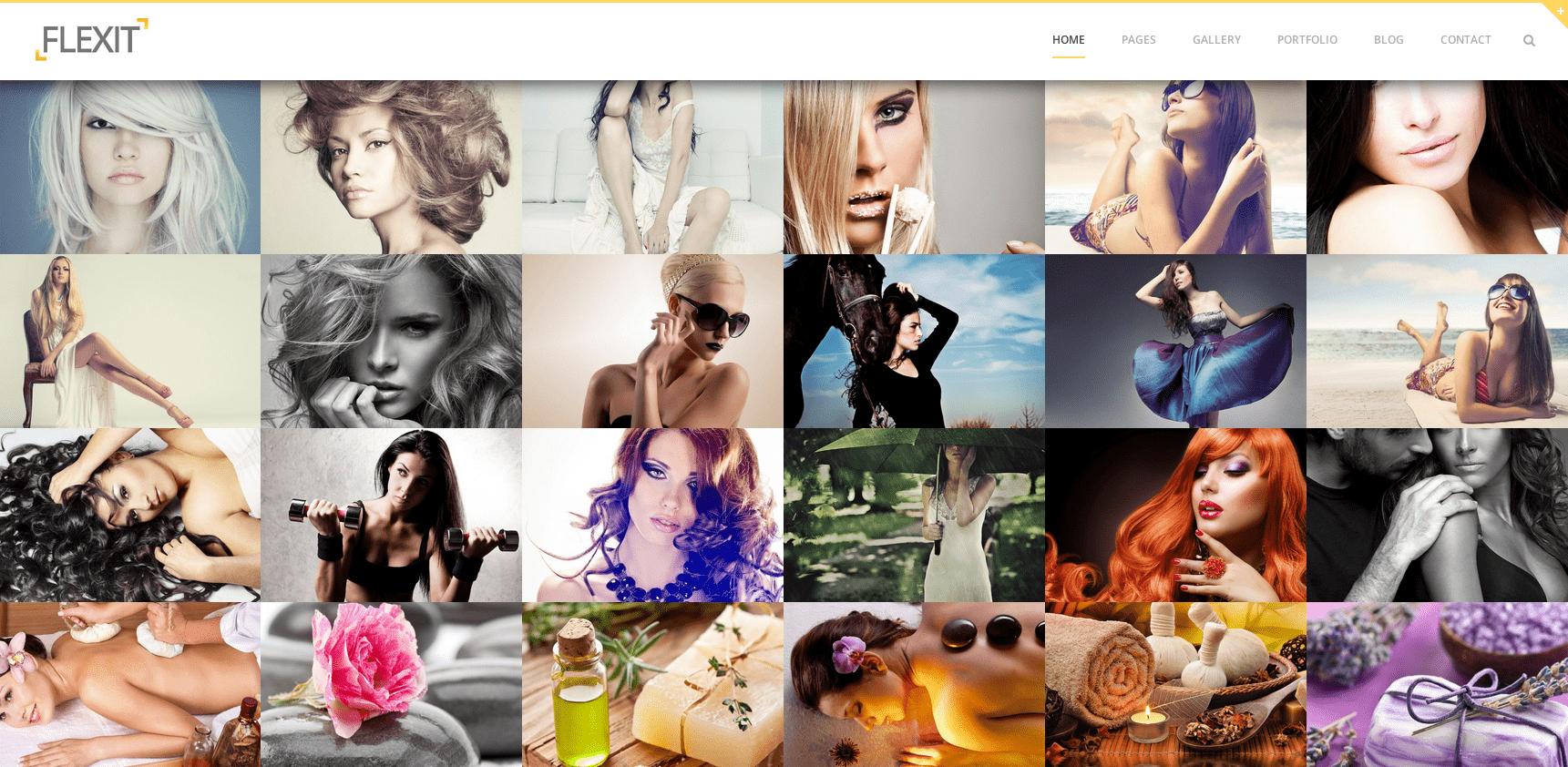 Galeria-de-Fotos-Online-Flexit
