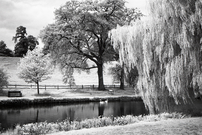 C mo hacer tu primera fotograf a infrarroja blog del fot grafo - Fotos en blanco ...