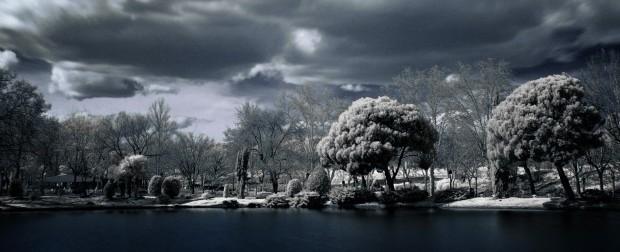 Imagen tomada con filtro infrarrojo.
