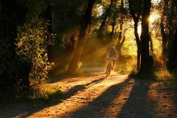 La luz como protagonista de la imagen