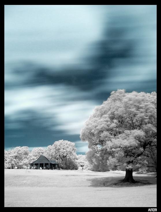 Fotografía infrarroja de Aitor Escauriaza