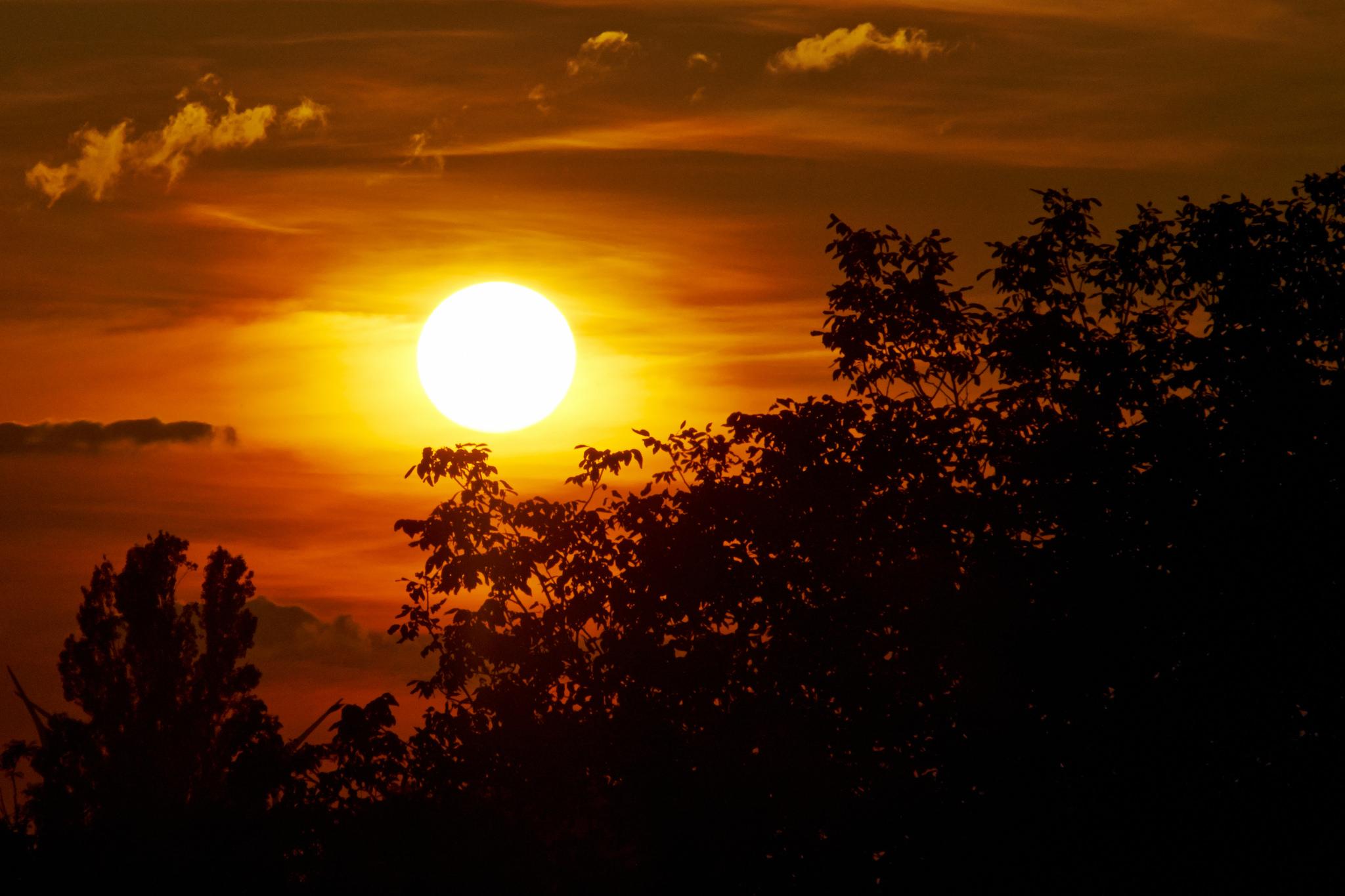 C mo fotografiar el sol primeros pasos consejos y trucos for Donde esta el sol