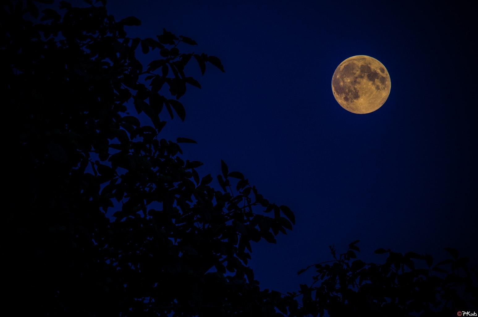 El cielo hipnotizado por la luna