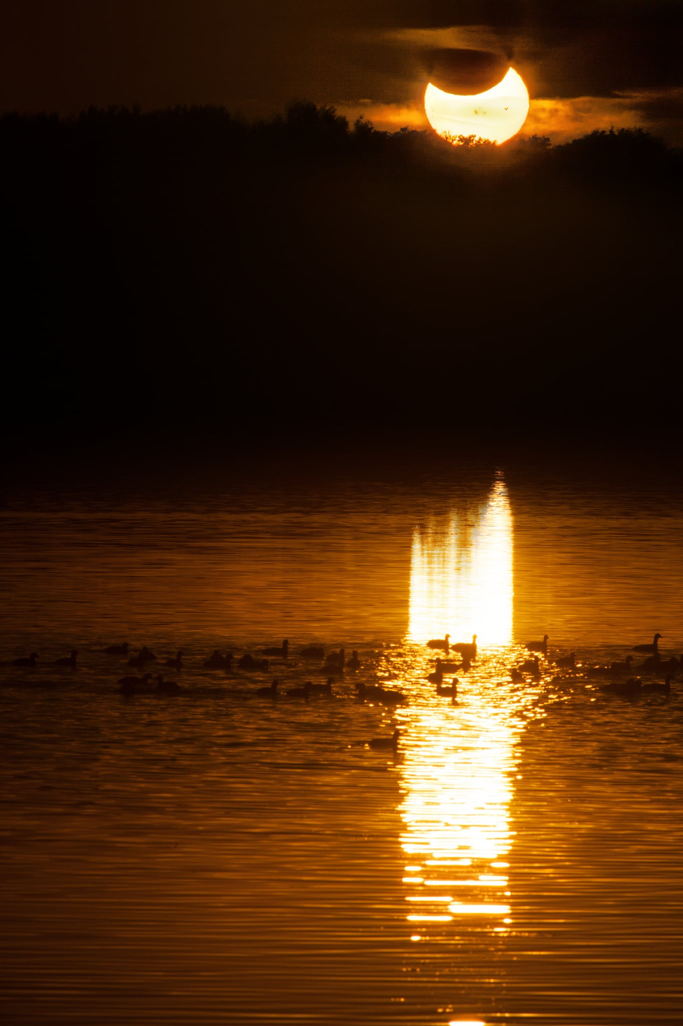 Eclipse fotografiafo por Leman Northway