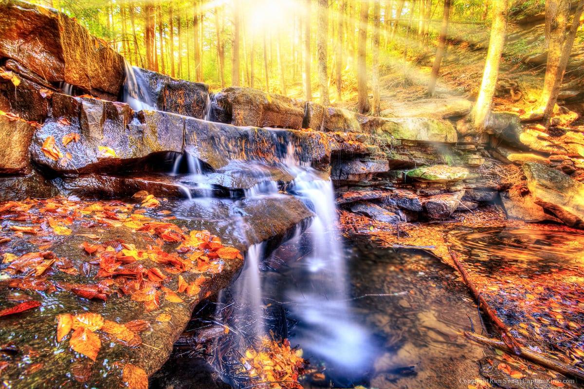 Small Waterfall at Swallow Falls Maryland