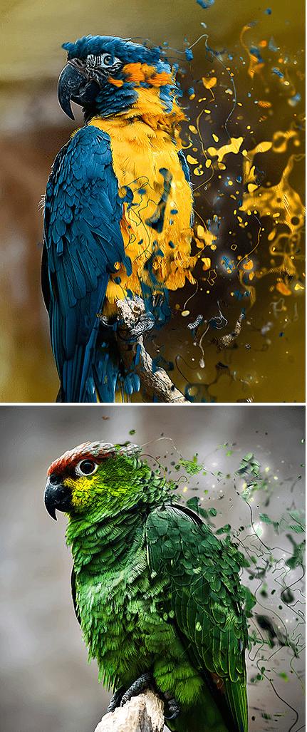 Pintura líquida