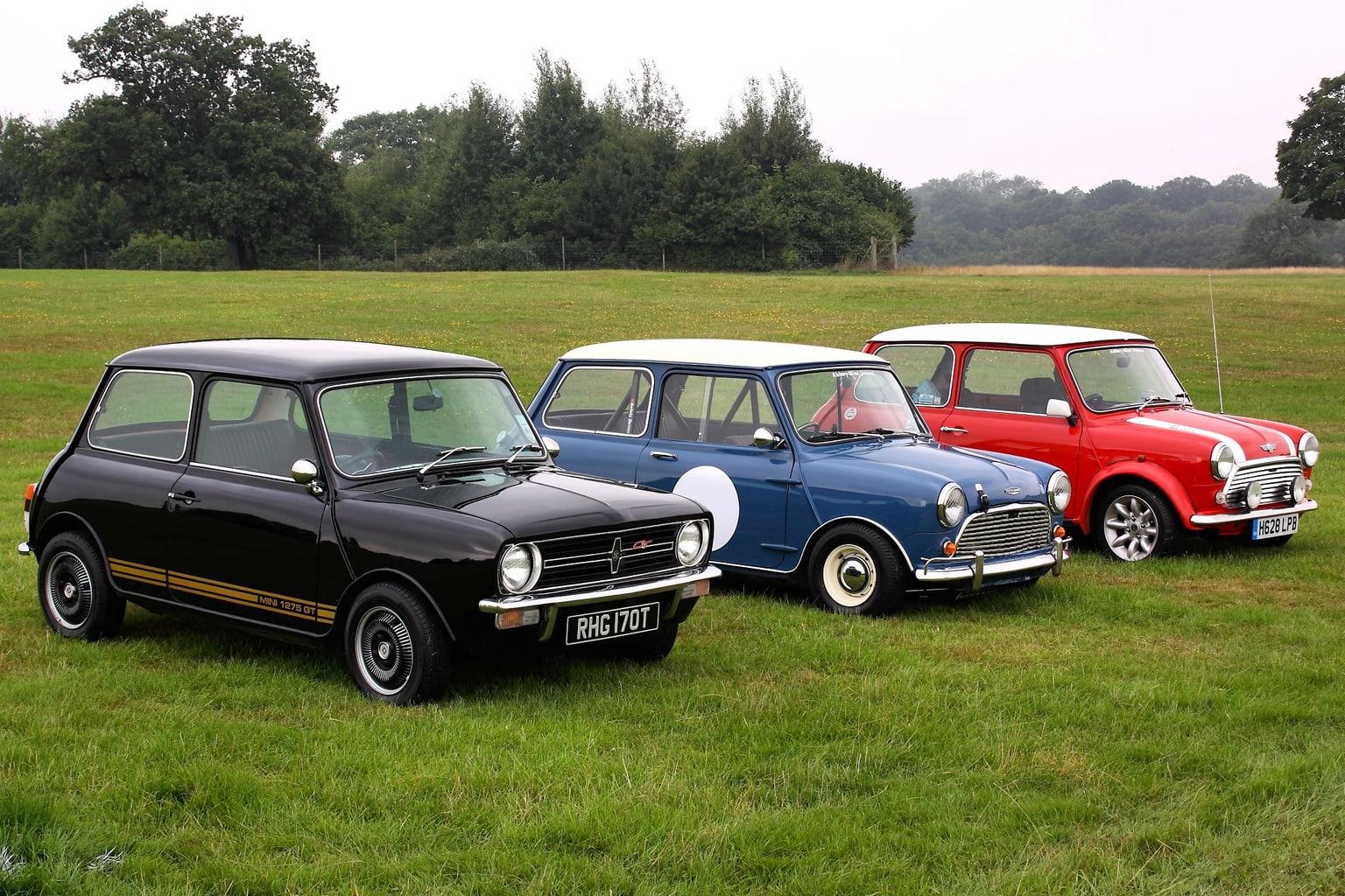 coches en un prado