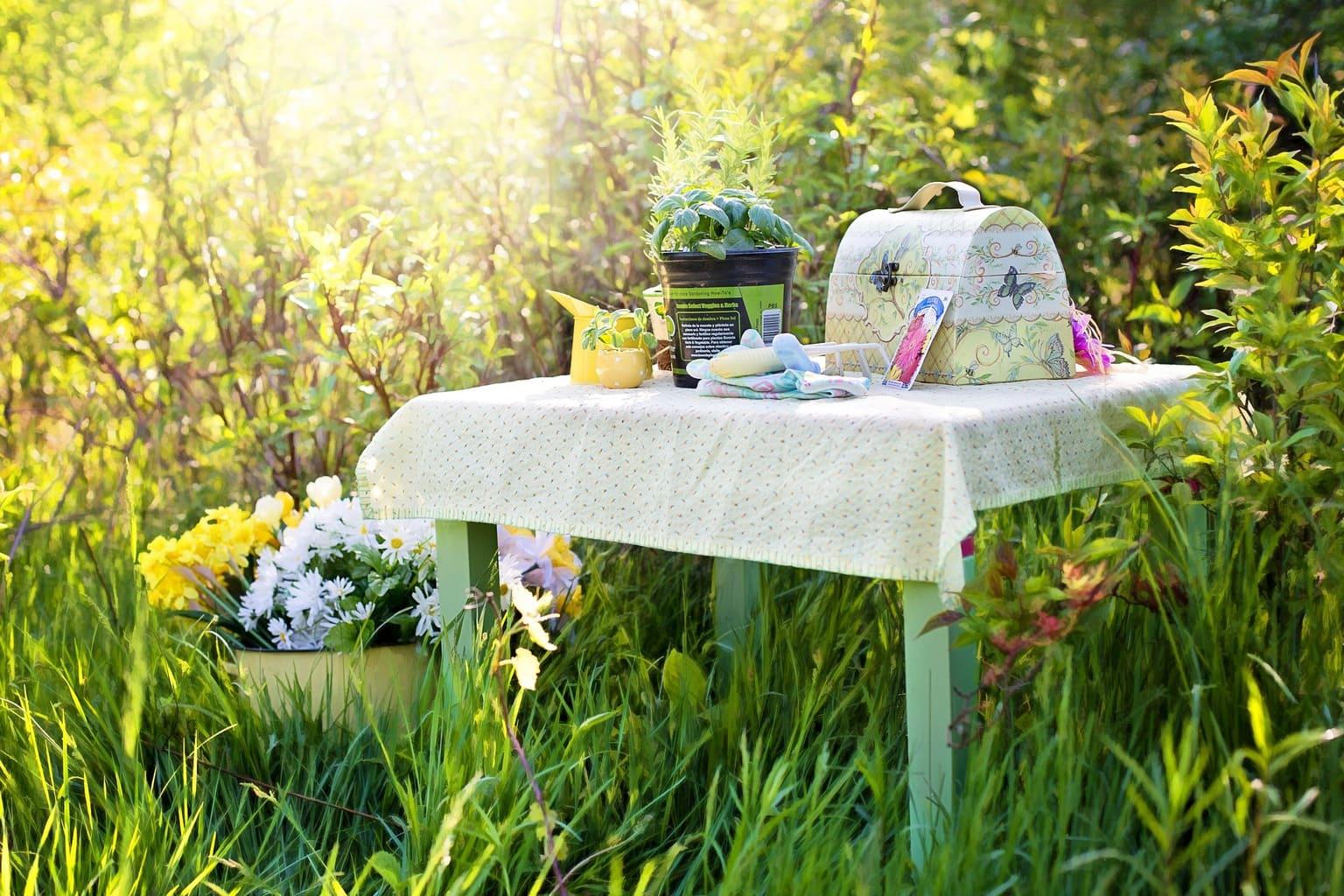 ¡Nos vamos de picnic!