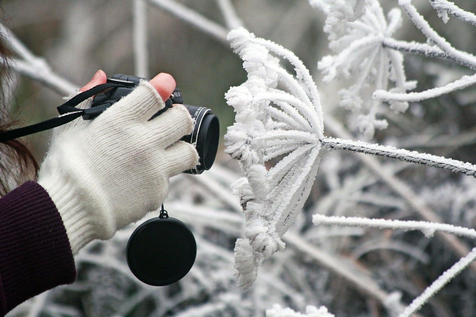 Protección frente al frío
