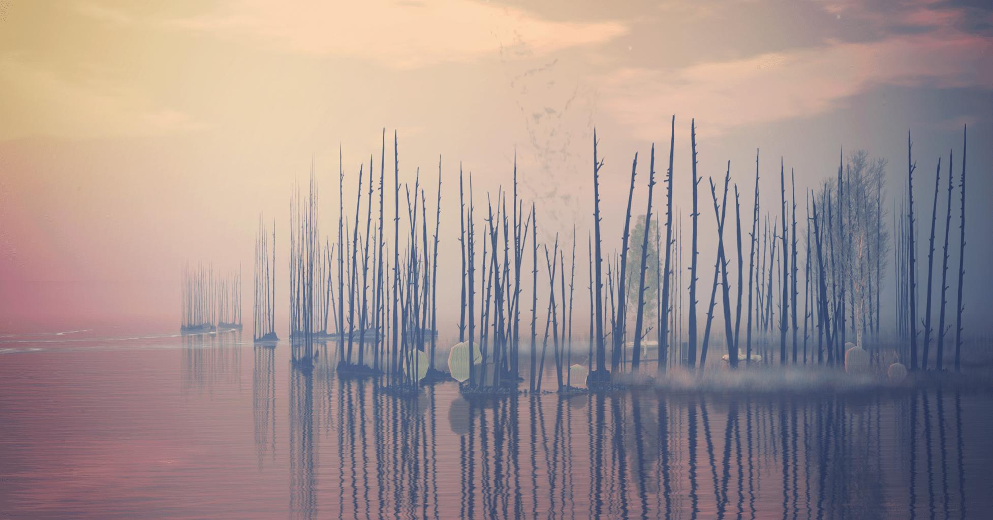 11 1 Formas De Transmitir Paz Y Tranquilidad En Tus Fotos