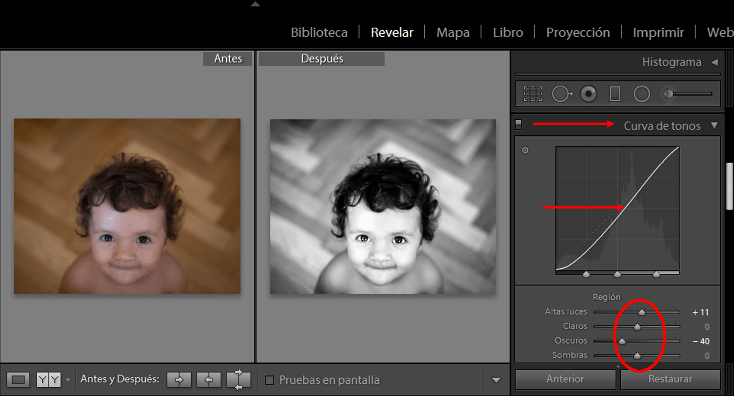 lightroom12