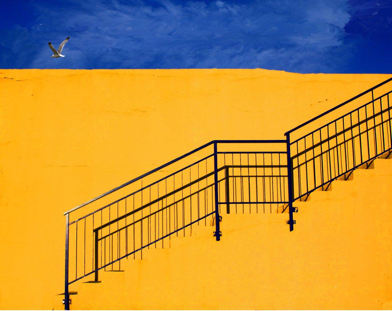 fotografía arquitectura escalera y gaviota