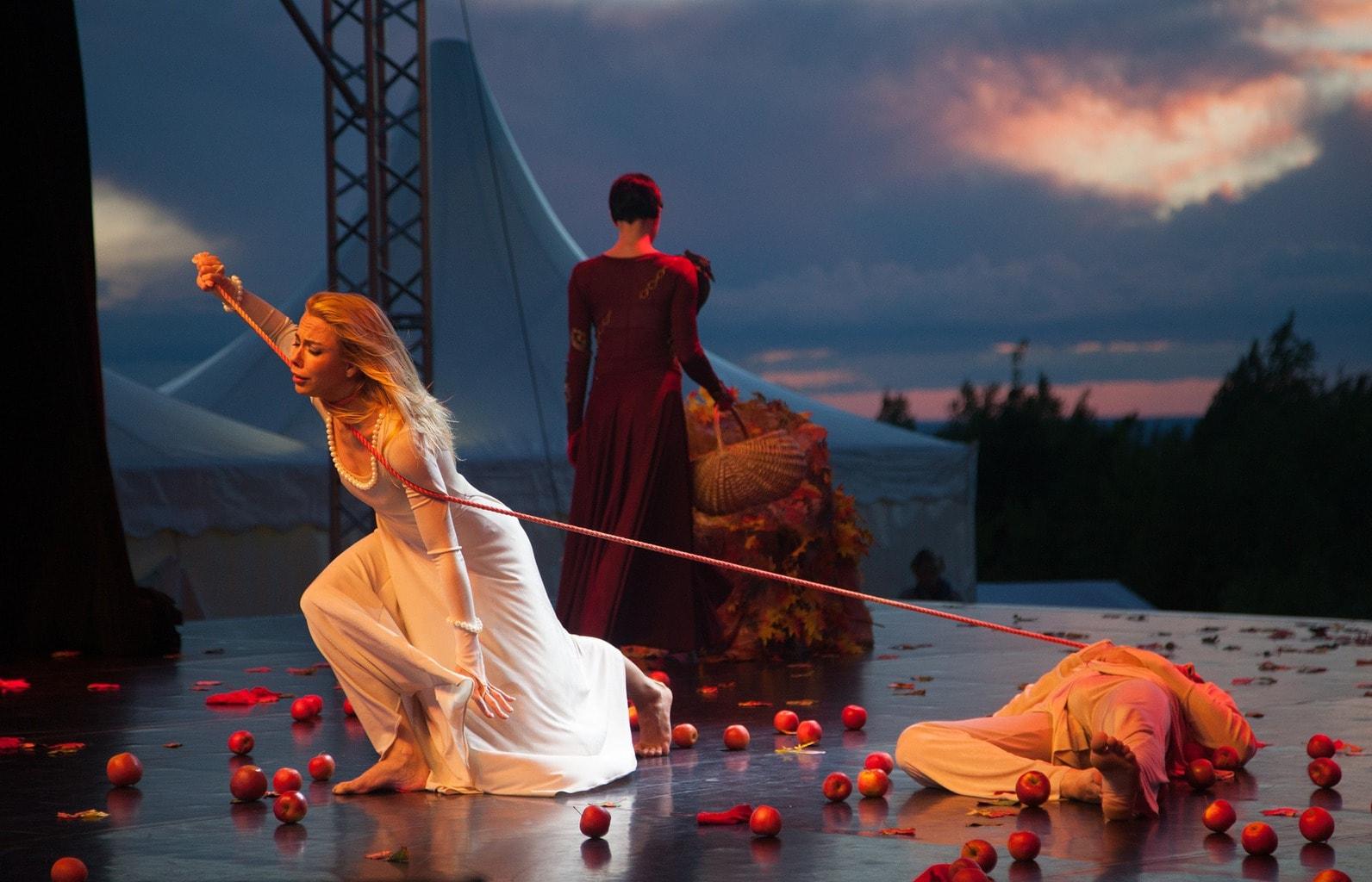 fotografía de un ballet
