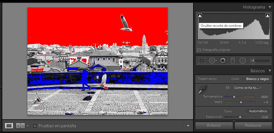 ejemplo editar fotografía blanco y negro