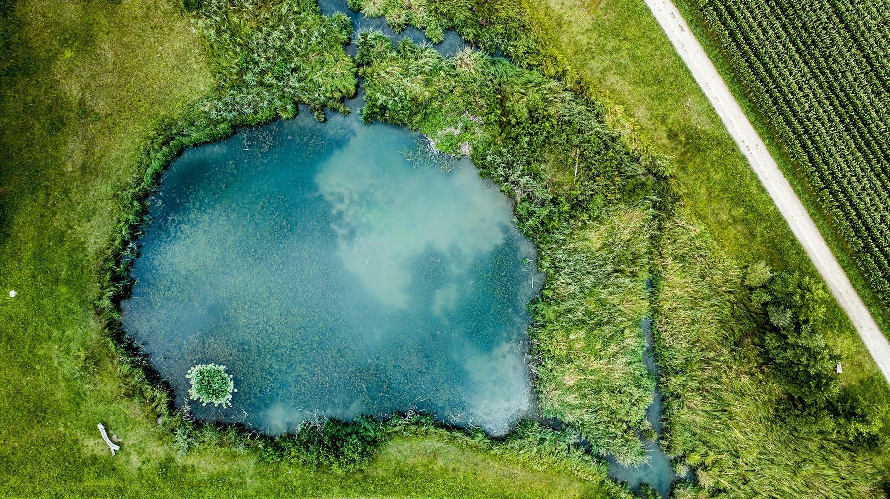fotografía aérea de un charco