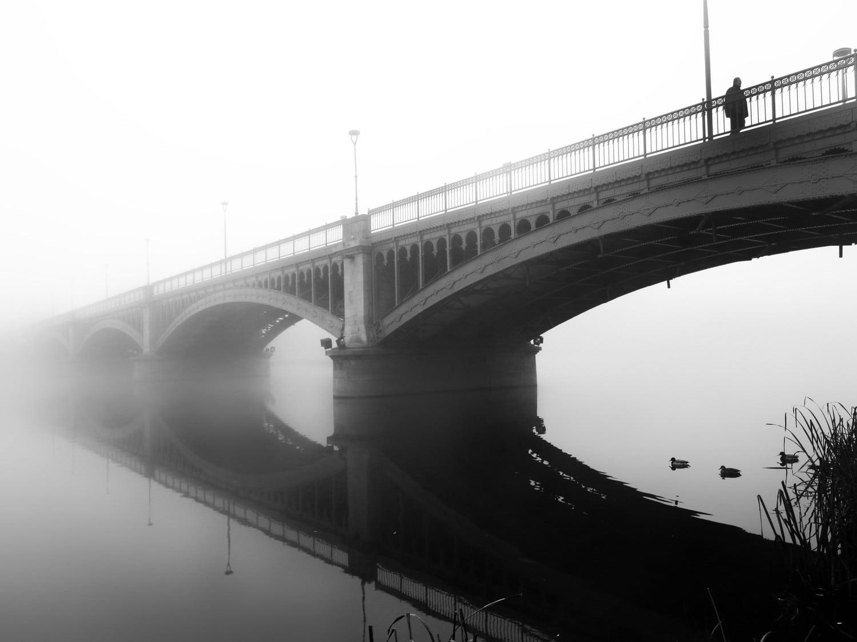 fotografía paisaje niebla y un río