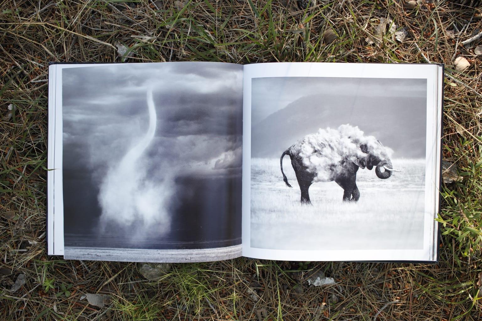elefante Libro Inspiración + Naturaleza