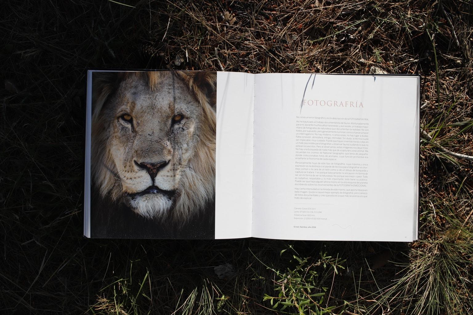 Fotografría Libro Inspiración + Naturaleza