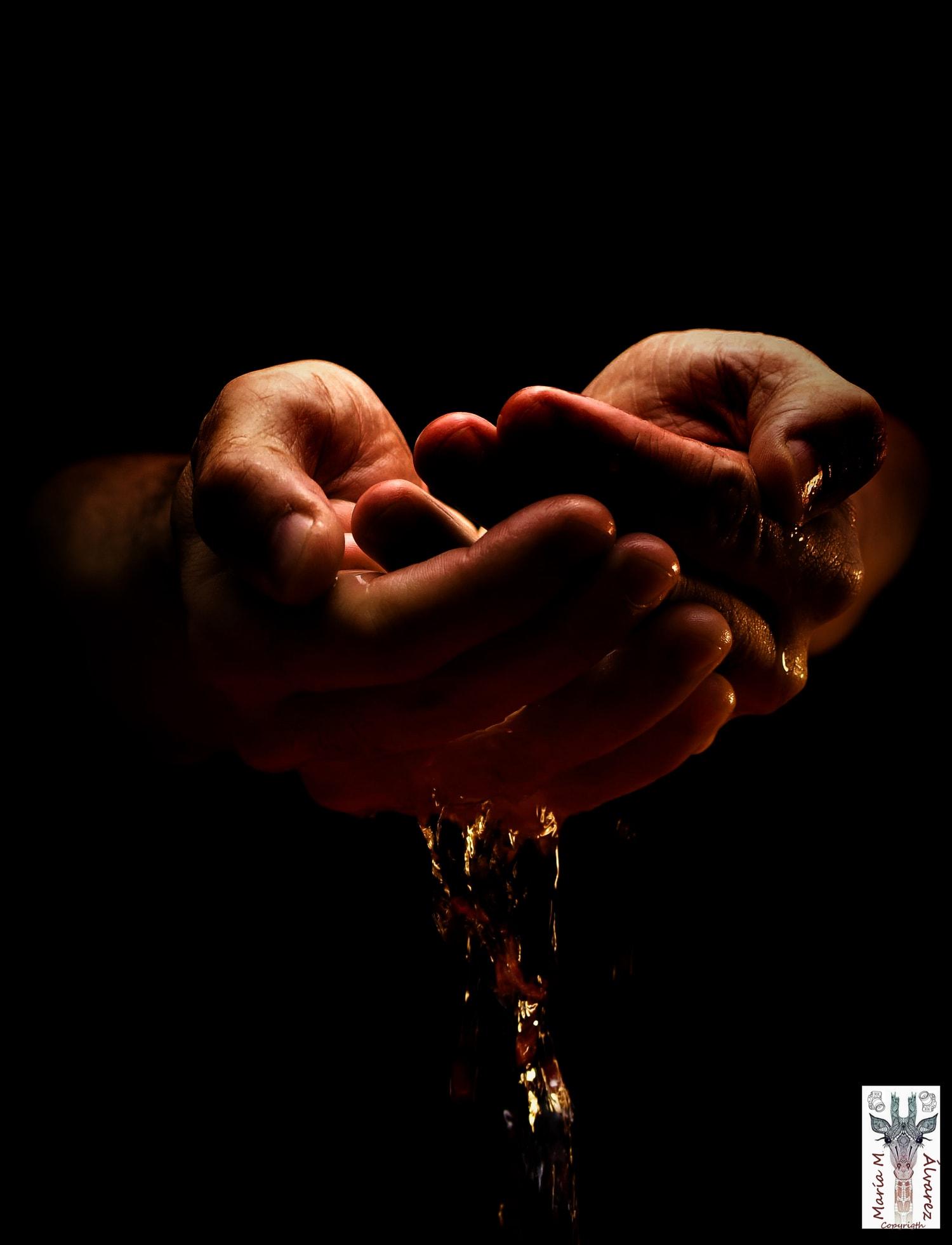fotografía manos con agua