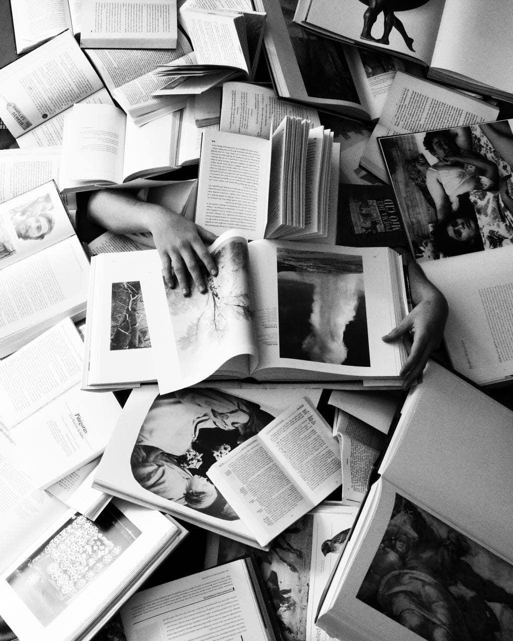 Fotografía de varios libros