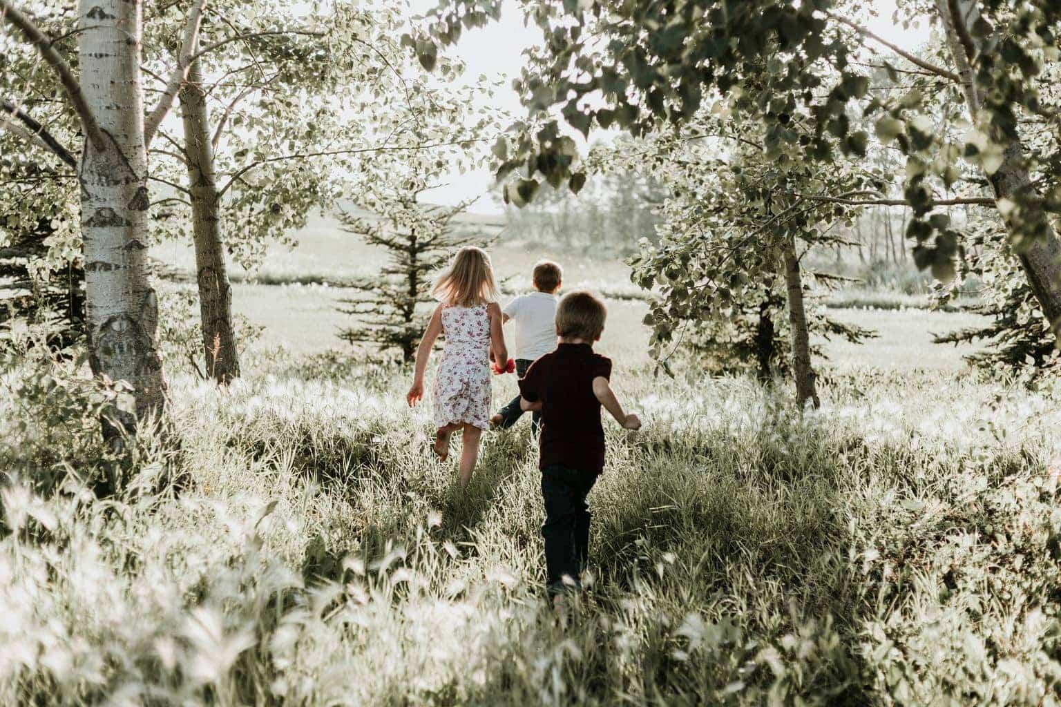 fotografía niños corriendo bosque