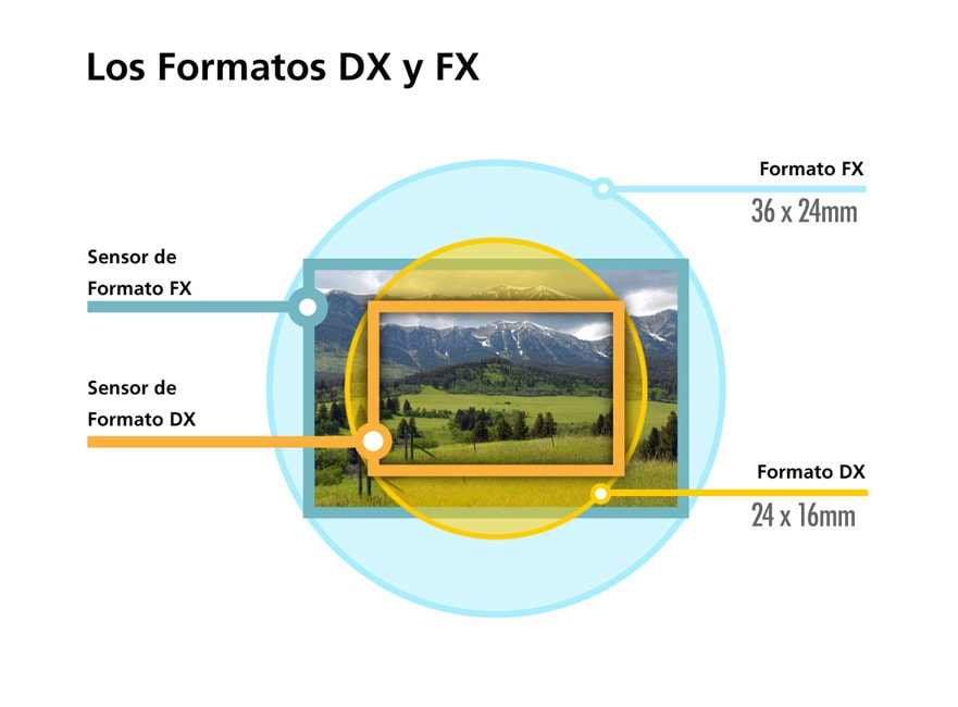 ilustración formatos FX y DX