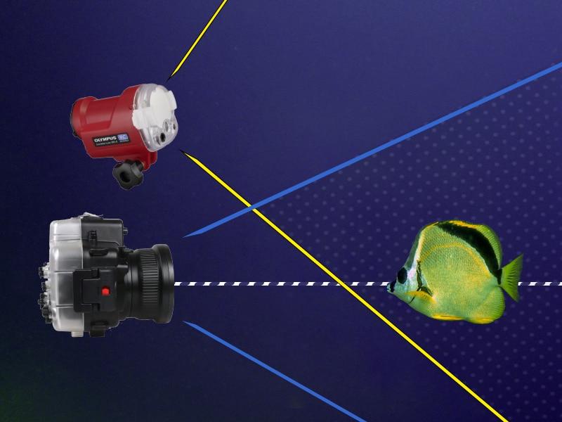 ilustración flash integrado y externo