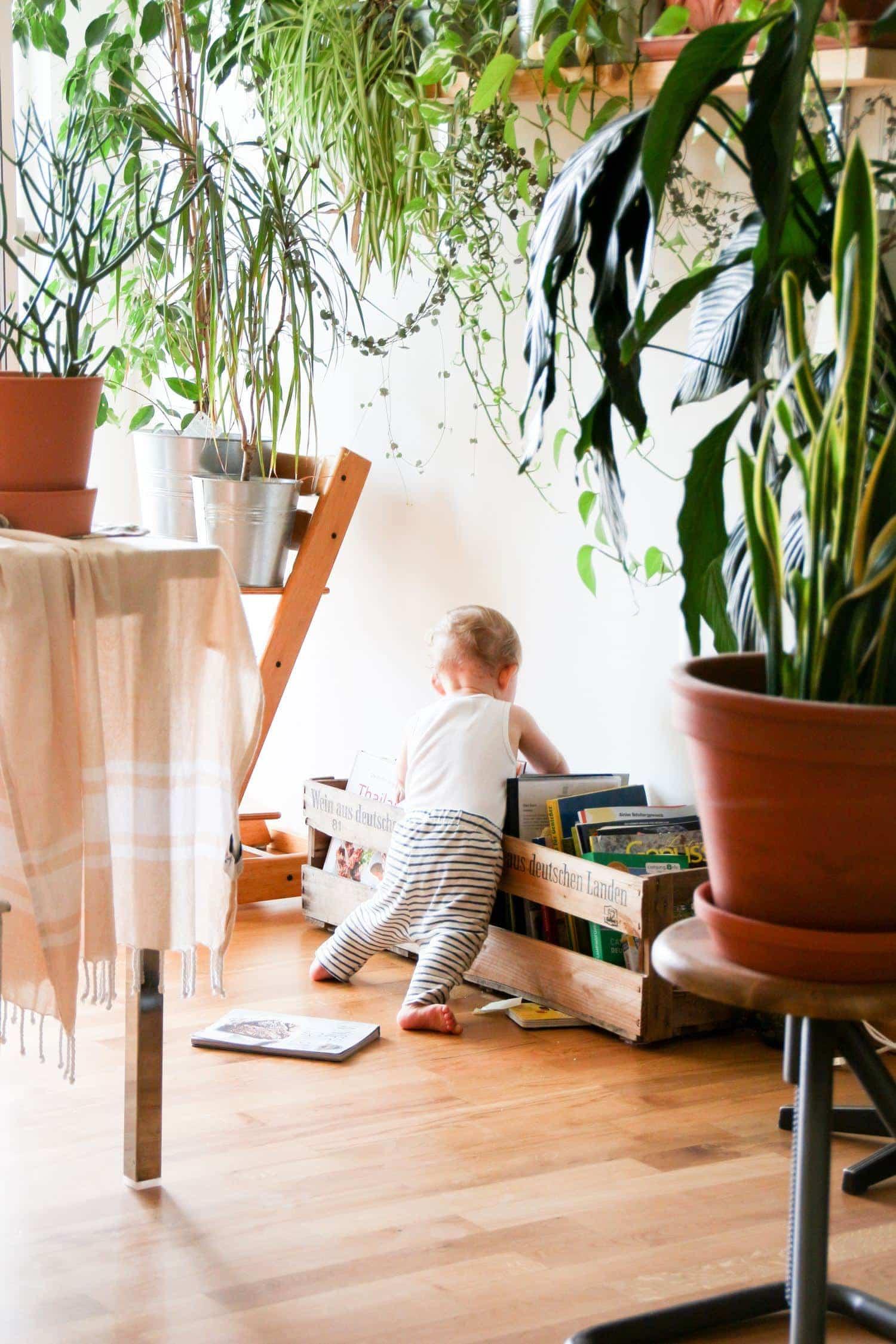 fotografía bebé explorando libros