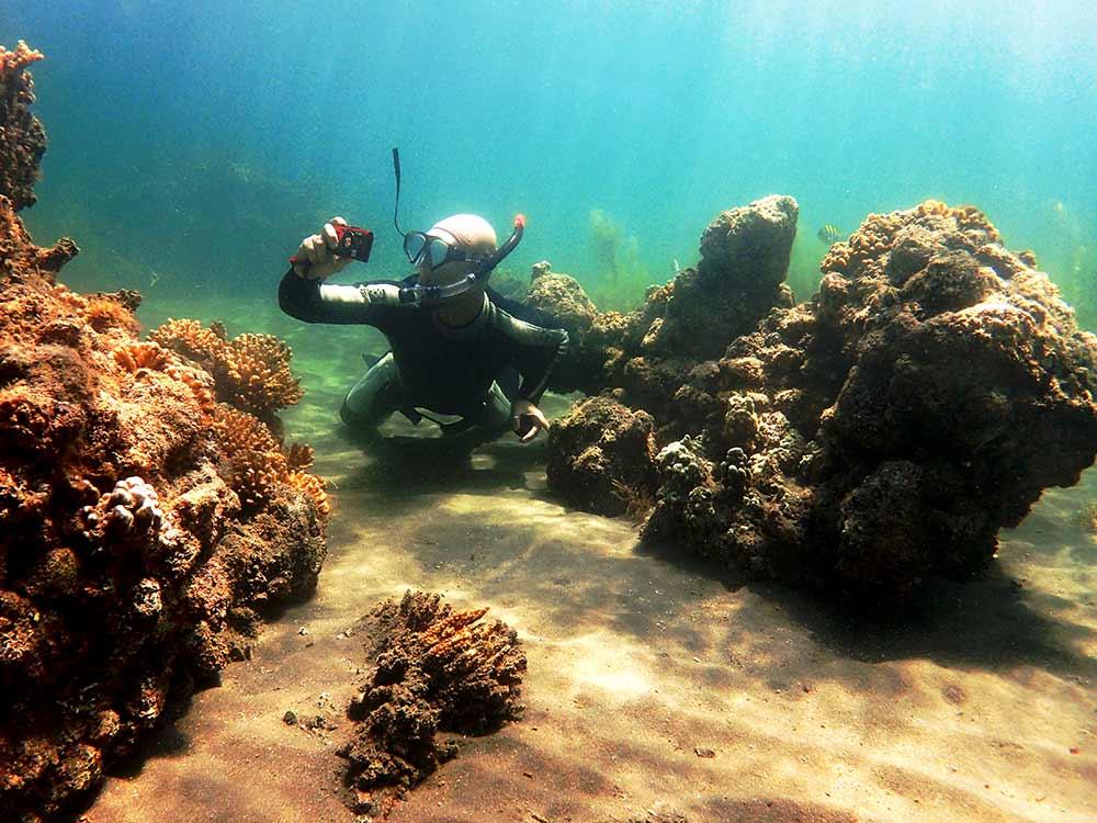 Fotografía submarina en apnea