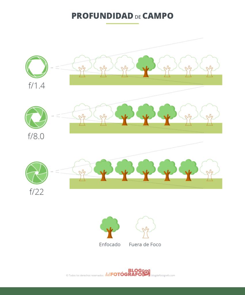 Gráfico sobre profundidad de campo