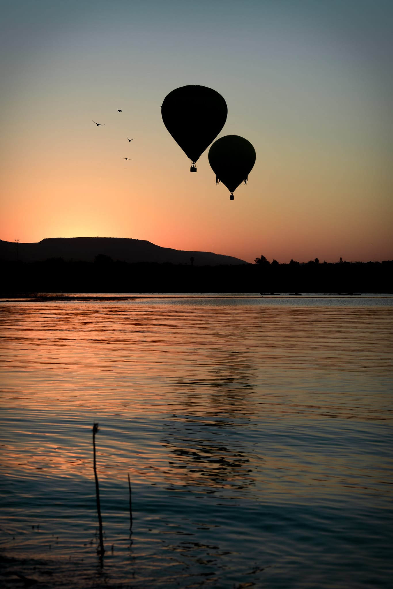 fotografía de dos globos en un atardecer