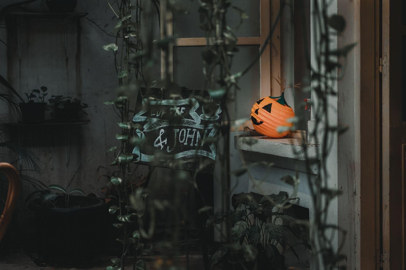 fotografía halloween calabaza