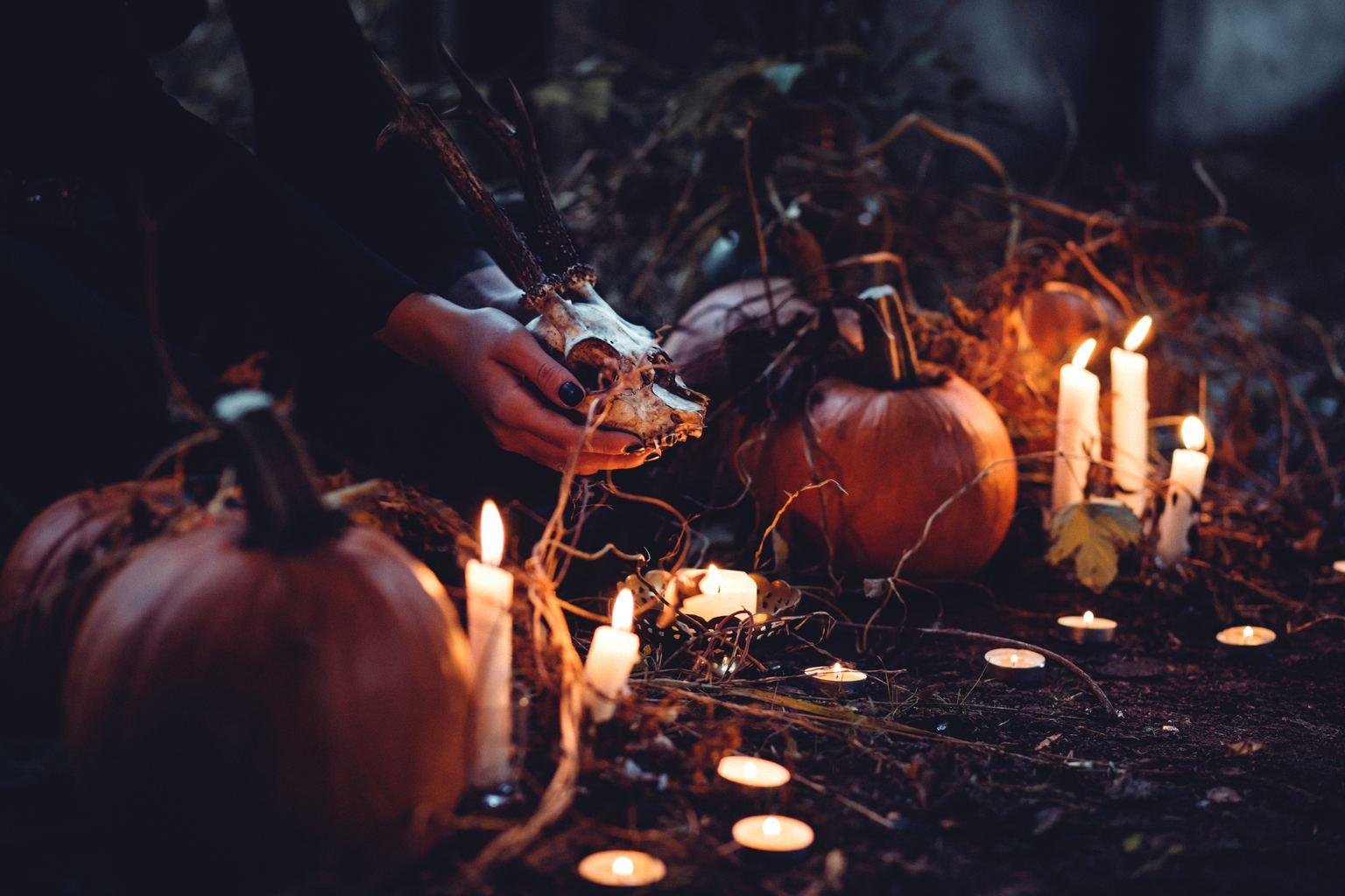 fotografía halloween calabazas y velas
