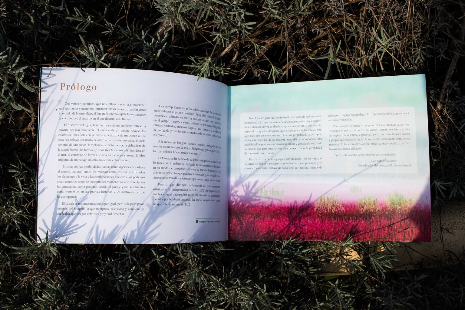 Prólogo Libro Paraísos Naturales