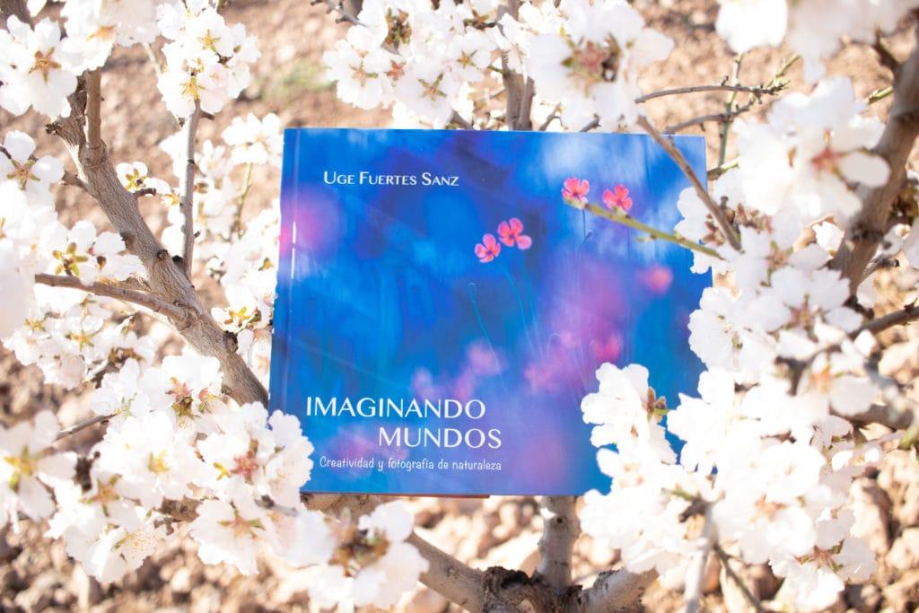 libro Imaginando Mundos entre flores de almendro