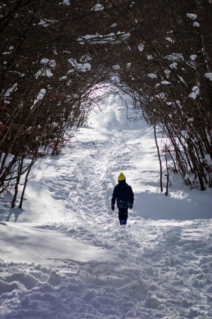 Chico paseando por la nieve bajo un arco de ramas