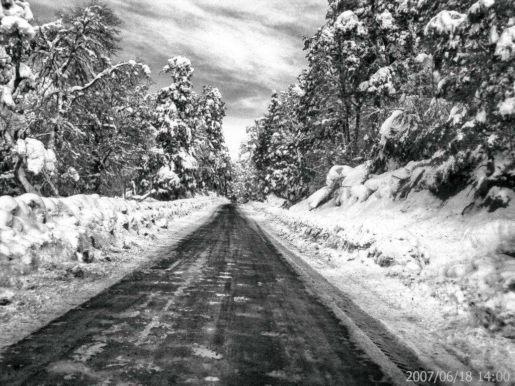 carretera por bosque nevado