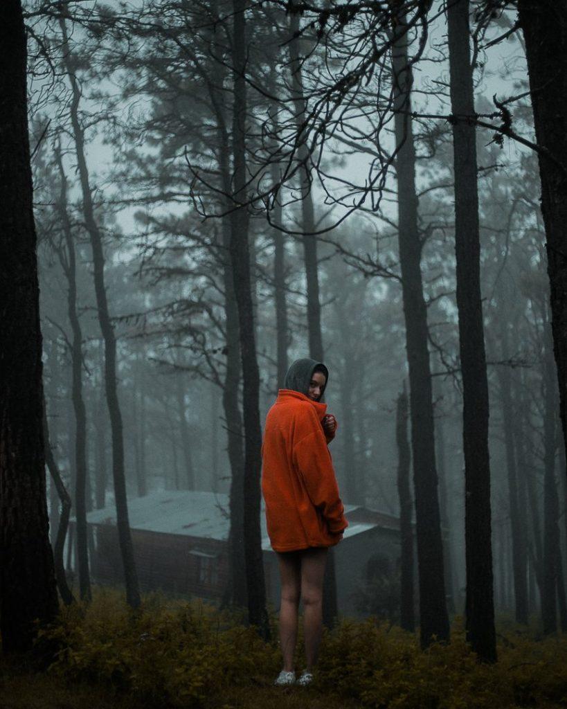 Chico de rojo en bosque gris