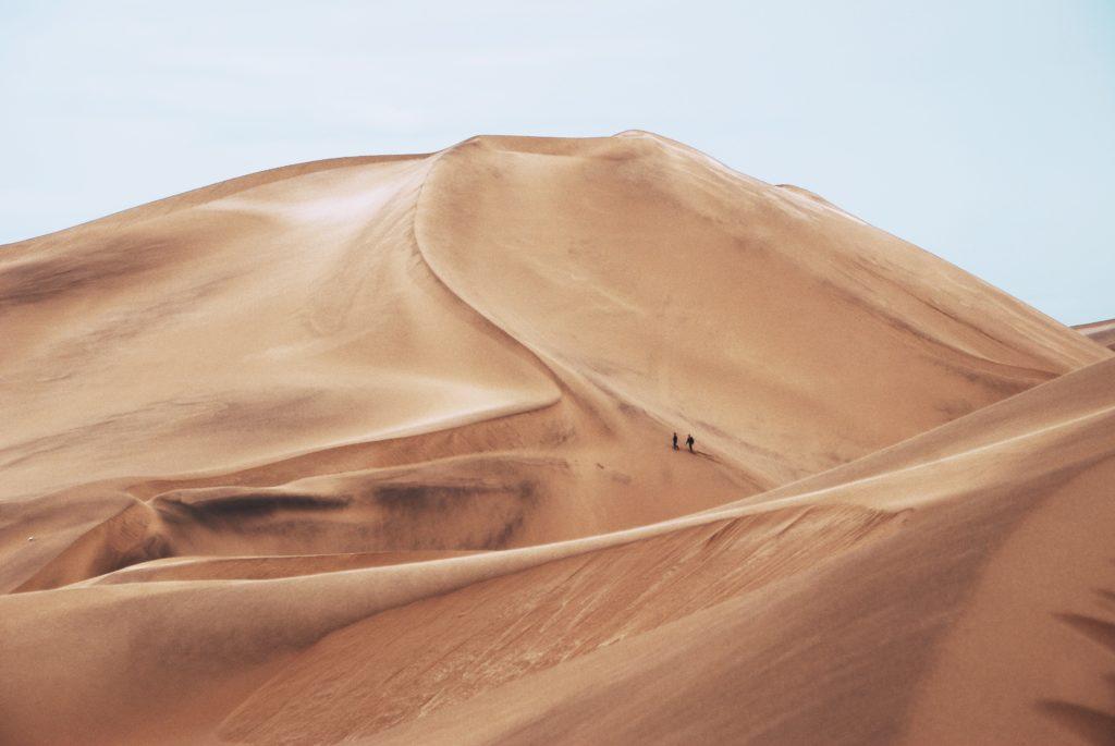 desierto duna paisaje