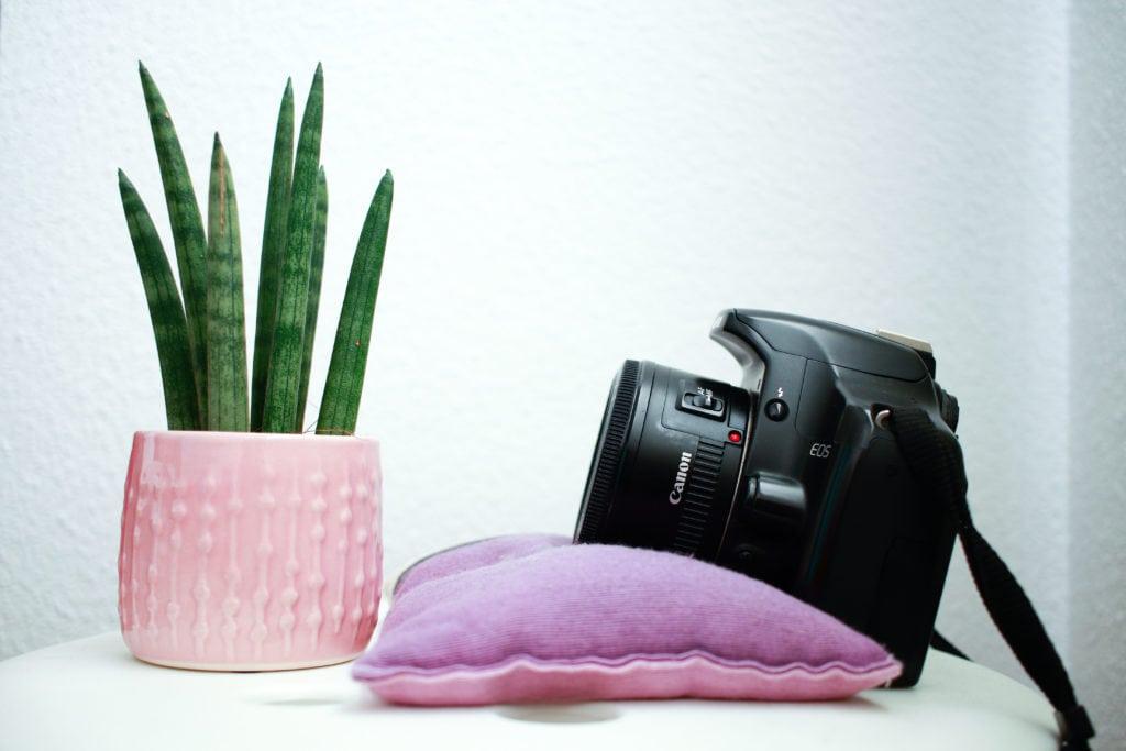 cámara con saco de semillas como estabilizador